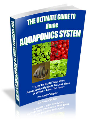 English One-time Billing Shippable Media PitchPlus The Ultimate Guide To Home Aquaponics System